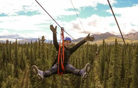 Denali Park Zipline LLC photo