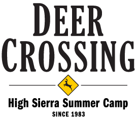 Deer Crossing Camp Logo