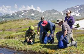 Alaska Wildland Adventures photo