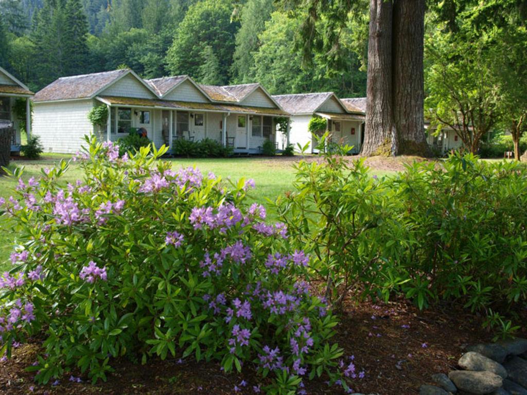 Lake crescent singer cabins